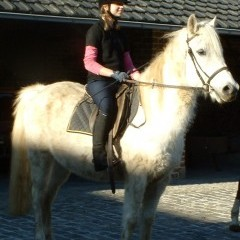 medium_Enya te paard 1.JPG