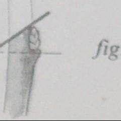 medium_Fig. 16 B.jpg