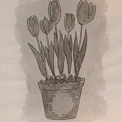 medium_bloembollen forceren 4.JPG